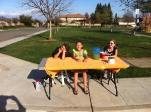 Selling lemonade at the neighborhood park near our home