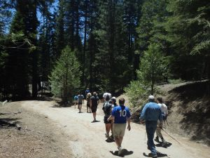 Group embarking on Phil Dixon's adventure hike on the northern loop from Grant's Grove