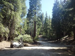 Old road to Grant's Grove before Hwy 180 was put in.  Now a fire access road.