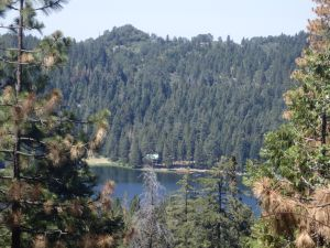 View of Lake Sequoia from the trail to Lion Meadow